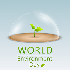 world-environment-day-2020-how-to-store-the-environment-read-essays-and-speech-associated-with-it-http://masterjitips.com/