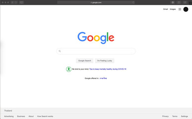 features in Google Chrome browser